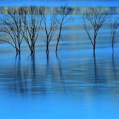 湖/ふくろう湖/石狩当別/風景/水景/水没林/... Blue city 北海道石狩郡当別町青…