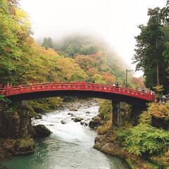 日光/紅葉/秋 日光に行きました。 紅葉綺麗🍁🍁