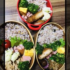 お弁当🍱 おはようございます☀  カリフラワー完食…(1枚目)