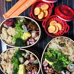 お弁当🍱 今日は、新たな試み😅🐙のソテーを入れてみ…(1枚目)