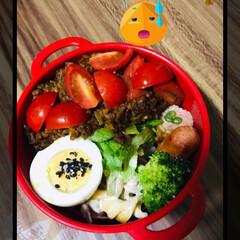 お弁当🍱 オクラが高くてびっくり💦 インゲンの肉巻…(2枚目)