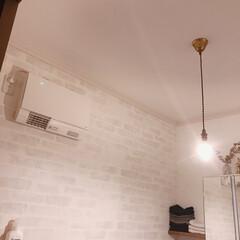 サニタリールーム/洗面所/照明/壁紙/おうち/住まい 我が家のサニタリールーム。リビングの照明…(2枚目)