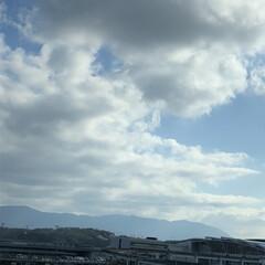 空/フォロー大歓迎/冬/猫/おでかけ/旅行/... 今日も、中々寒いですね。