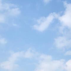 空/フォロー大歓迎/冬/猫/おでかけ/旅行/... 午前中は、青空が見えていました💖🤗🐾