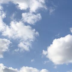 空/フォロー大歓迎/冬/猫/おでかけ/旅行/... もくもく雲で〜す(*'▽'*) でも、今…