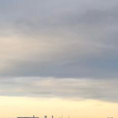 空/フォロー大歓迎/冬/猫/おでかけ/旅行/... 今日は、朝からどんよりと した天気でした…