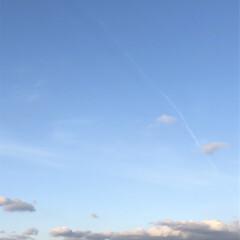 空/フォロー大歓迎/冬/猫/おでかけ/旅行/... 少し黒い雲が 出て来たなぁ 明日少し 寒…