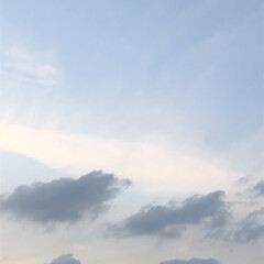 空/フォロー大歓迎/冬/猫/おでかけ/旅行/...