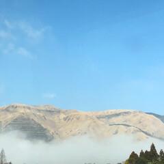 フォロー大歓迎 熊本で、午後からは、 青空が広がりました…