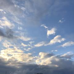 空/フォロー大歓迎/冬/猫/おでかけ/旅行/... 夕方ベランダに 出て見ると 夕日を 浴び…