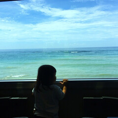 紀勢線/和歌山/車窓から/電車/田舎の風景/帰省/... お盆の長期休暇を利用して、娘と電車旅。車…