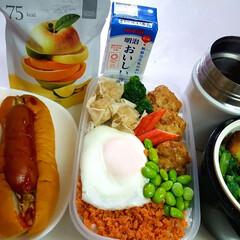 ウェイトアップ/部活弁当/高校男子弁当 本日のお弁当 ①➡肉団子、焼売、カニかま…