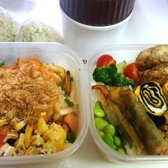 高校男子お弁当/部活弁当 本日のお弁当 米➡豆腐入りハンバーグ、鶏…