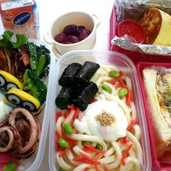 部活弁当/高校男子弁当/フォロー大歓迎/LIMIAファンクラブ 本日のお弁当 ①➡ハンバーグ、小松菜とト…