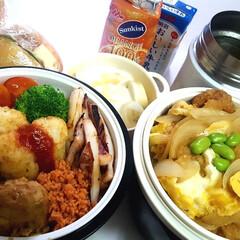 部活弁当/高校男子弁当/フォロー大歓迎 本日のお弁当 ①➡カツ丼  ②➡肉団子、…