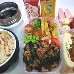 ウェイトアップ/部活弁当/高校男子お弁当 本日のお弁当 ①➡プルコギ丼、カルボナー…(1枚目)