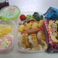 部活弁当/高校男子弁当/セリア/お弁当/フォロー大歓迎 本日のお弁当 ①➡餃子、ウインナー、焼き…