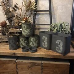 ペンキ 塗料 水性塗料 室内塗料 工作 全68色 水性 STYLE DIYペンキ 500ml(ペンキ、塗料)を使ったクチコミ「シンプルリメ缶🥫」