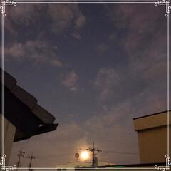 猫じゃらし/中秋の名月/やまざきお月見3色だんご/ダイソー/100均/おやつタイム/... 中秋の名月🌕  お月見3色だんご🍡3本6…(2枚目)