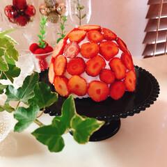 いちご/食ぱんのみみ/ホイップクリーム/いちごドームぱん/バレンタイン2020/100均/... 作りたかったいちごドームケーキ🍓 いちご…