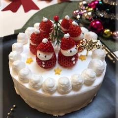 Xmasケーキ/いちごサンタ/ブッシュ・ド・ノエル/クリスマス/クリスマスツリー/おうちごはんクラブ/... 我が家にも クリスマスがやってきた~(*…(2枚目)