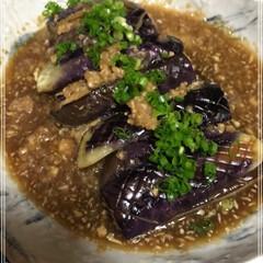 麺つゆ/生姜/なす なすの煮びたし♪  大根にスが入ってたぁ…