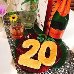 ナンバーケーキ/スポンジケーキ/ブルーベリー/さくらんぼ/ココア/チョコ/... ナンバーケーキ20🎂 今日は息子20歳の…(4枚目)