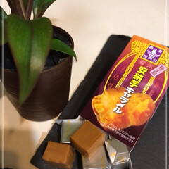 絹ごし豆腐/オリーブオイル/モッツァレラチーズ風/バジル/トマト/岩塩/... モッツァレラチーズ風  さっそく作ってみ…(4枚目)