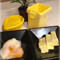 温泉たまご/電子レンジ/卵焼き/たまご/グリーン/お弁当/... レンジで簡単たまご料理(ダイソー) 詰め…