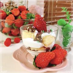 カップいちごケーキ/いちごケーキ/バレンタイン2020/フォロー大歓迎/節約 いちごたくさん~🍓🍓🍓  カップいちごケ…