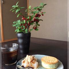 ユスラウメ/業務スーパー/わらび餅/ビスケットアイス/令和元年フォト投稿キャンペーン/令和の一枚/... お気に入りの和室で お気に入りのお皿で …