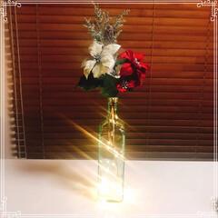 コルク型ライト/クリスマス/ポインセチア/鏡月/ベルベット/クリスマス2019/... ベルベット素材のポインセチア(赤白) コ…