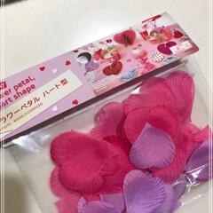 さくら/桜の花びら/食器/フォロー大歓迎/キッチン雑貨/雑貨/... 明日はひな祭り🌸  ですが何も考えていま…(2枚目)