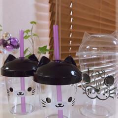 牛乳/ゼリー/マンゴードロリッチ/コーヒードロリッチ/猫みみカップ/冷たい飲み物選手権/... おはようございます(´O`)  マンゴー…(3枚目)