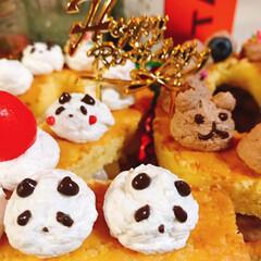 ナンバーケーキ/スポンジケーキ/ブルーベリー/さくらんぼ/ココア/チョコ/... ナンバーケーキ20🎂 今日は息子20歳の…(2枚目)