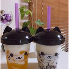 牛乳/ゼリー/マンゴードロリッチ/コーヒードロリッチ/猫みみカップ/冷たい飲み物選手権/... おはようございます(´O`)  マンゴー…(1枚目)