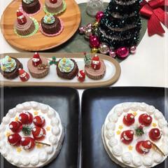 Xmasケーキ/いちごサンタ/ブッシュ・ド・ノエル/クリスマス/クリスマスツリー/おうちごはんクラブ/... 我が家にも クリスマスがやってきた~(*…(7枚目)