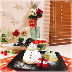 ドームケーキ/雪だるまケーキ/雪だるま/ツリーケーキ/チョコレート/ホイップクリーム/... 雪だるまケーキ☃️  ブッシュドノエルの…(2枚目)