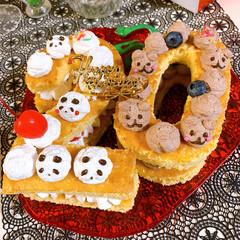 ナンバーケーキ/スポンジケーキ/ブルーベリー/さくらんぼ/ココア/チョコ/... ナンバーケーキ20🎂 今日は息子20歳の…