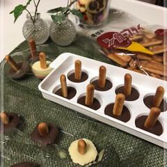 きのこの山/製氷器/卵パック/ビスケット/チョコレート/きのこちゃん/... 春~🌸 きのこ~🍄 きのこは秋か....…(3枚目)