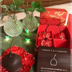 チョコレート/チェリーボンボン/クラブハリエ/cacao/バレンタイン/フォロー大歓迎/... 娘からのバレンタイン❤2/13 どーして…