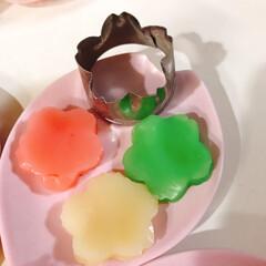 いがまんじゅう/ひなあられ/いちご大福/3色ういろう/ひな祭り/ピンク/... いがまんじゅう🌸 お米ピンクで可愛い(≧…(2枚目)