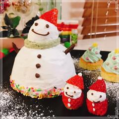 ドームケーキ/雪だるまケーキ/雪だるま/ツリーケーキ/チョコレート/ホイップクリーム/... 雪だるまケーキ☃️  ブッシュドノエルの…