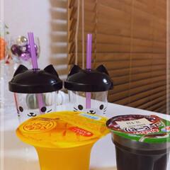 牛乳/ゼリー/マンゴードロリッチ/コーヒードロリッチ/猫みみカップ/冷たい飲み物選手権/... おはようございます(´O`)  マンゴー…(2枚目)