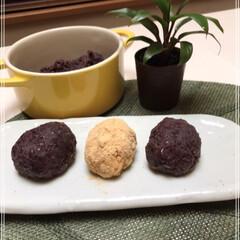 おはぎ/きな粉/もち米/お米/北海道産小豆/お彼岸/... おはぎ2種類 小豆から作りました(*ˊ˘…