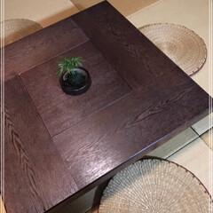 ダイソー/100均/グリーン ダイソー植物5種類の巻٩(ˊᗜˋ*)و …(4枚目)