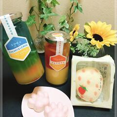 ソーダゼリー/オレンジマンゴーゼリー/銀座のいちごケーキ/肉球チョコ/100均/おやつタイム/... 肉球チョコฅ•ω•ฅ 銀座のいちごケーキ…