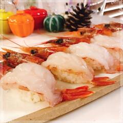 赤えび/赤えび握り/握り寿司/次のコンテストはコレだ!/フォロー大歓迎/節約 大好きな生えび♡ スーパーで赤えび🦐買っ…