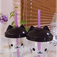牛乳/ゼリー/マンゴードロリッチ/コーヒードロリッチ/猫みみカップ/冷たい飲み物選手権/... おはようございます(´O`)  マンゴー…(4枚目)
