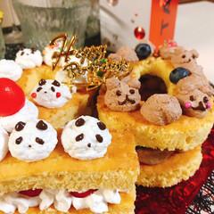 ナンバーケーキ/スポンジケーキ/ブルーベリー/さくらんぼ/ココア/チョコ/... ナンバーケーキ20🎂 今日は息子20歳の…(3枚目)